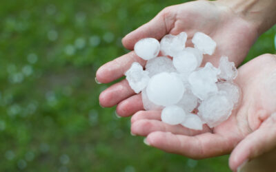 Flat Roofs & Hail Damage: Signs To Look Out For